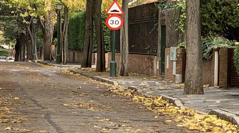 Reforma Calle Iris